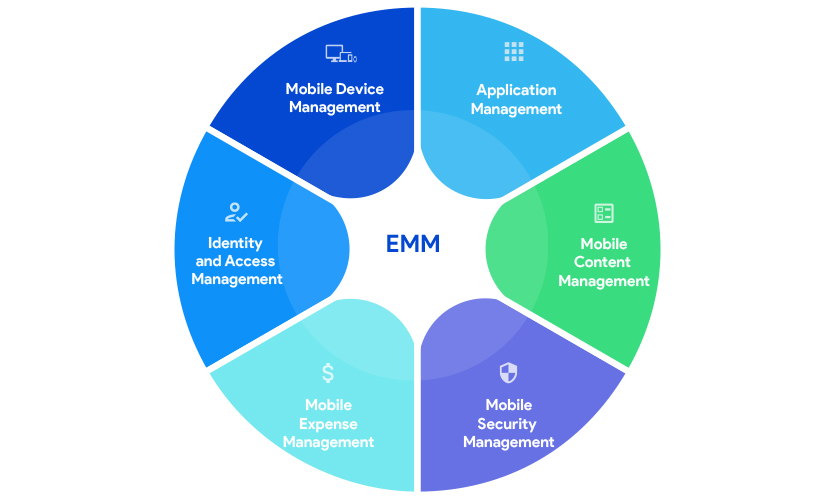 Components of EMM
